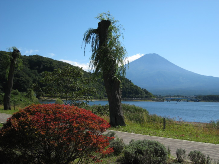 Gardens on the north shore of Lake Kawaguchi