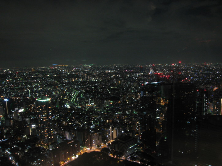Night view from Tokyo Metropolitan Government Offices building