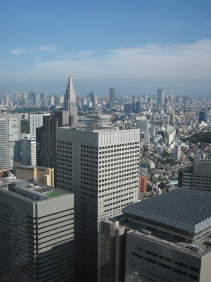 View from Tokyo Metropolitan Government Offices building