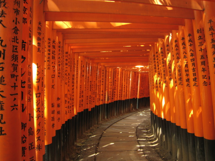 Torii at the Fushimi-Inari shrine