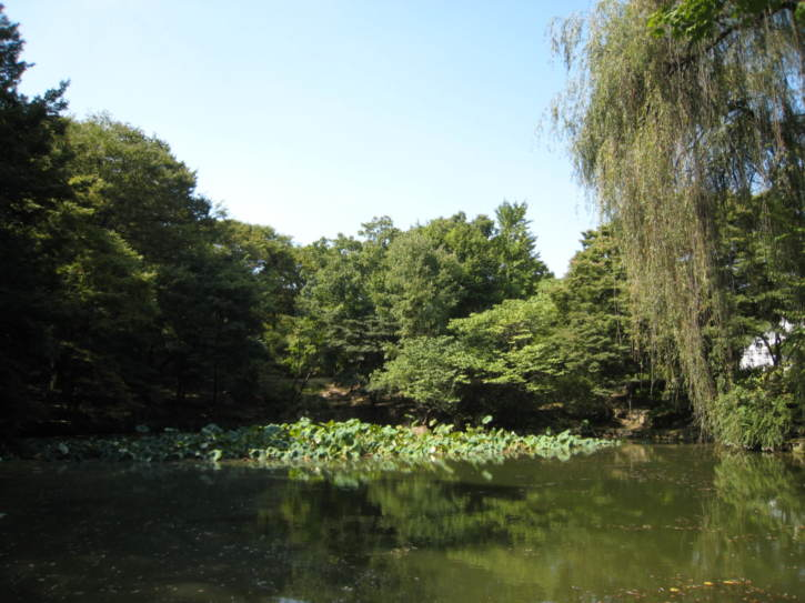 Chundangji Ponds at Changgyeonggung Palace
