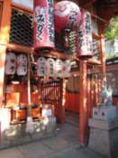 In the grounds of the Yasaka-Jinja Shrine