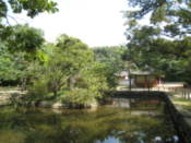 Pond at Jongmyo Shrine