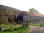 Farm, from another angle