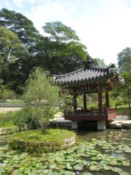 The park's Korean Friendship Garden