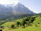 In the Grindelwald valley