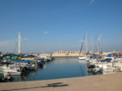 The Jaffa Port