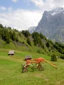 On the Bort - Grindelwald scoot