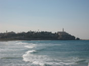 Looking towards Jaffa