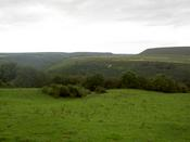 The Yorkshire Moors