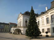 Christmas tree outside of Presidential Palace
