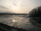 Morava carries ice into the Danube