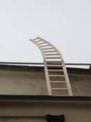 Curious ladder left on top of a building