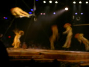 "Monkey acrobatics in ""The Lion King"" show"